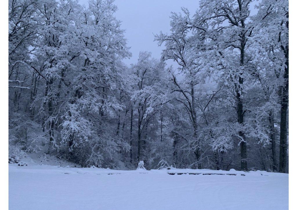 invierno chino
